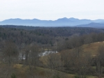 Biltmore Estate (3)