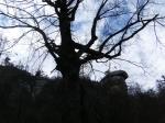Chimney Rock Park (10)