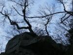 Chimney Rock Park (8)