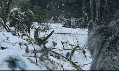 In January, the wolves of THE GREY were metaphorical.