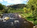 Glendalough Stream 1