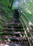 Wicklow Glencree Armory Stairs to Grotto