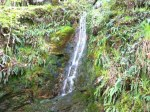 Wicklow Waterfall 2