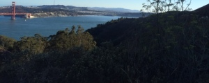 Marin Headlands View 5