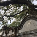 Lafayette Cemetery 15