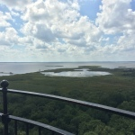 View atop Currituck Lighthouse 02